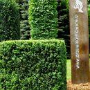 Park Śląski. Drzewa ikrzewy - wystawa